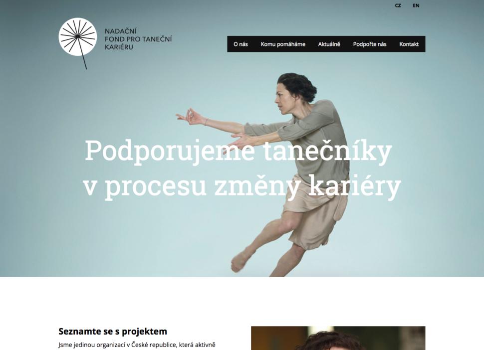 webové stránky neziskové organizace